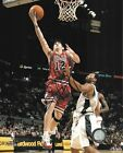 Chicago Bulls Collecting and Fan Guide 66