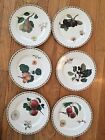 Set of (6) Royal Horticulture Society Hooker Fruit Queen's  SALAD Plates 8 1/2