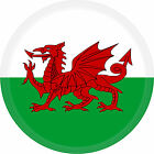 Flag Sticker Wales 3 D 5cm For Car Caravan Bike Helmet Laptop