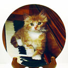 Picture Purffect Plate Kitten on the Keys 1993 Crestley Collection