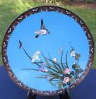 Exquisite Antique Japanese 19thC Meiji Cloisonne Plate - Bird Among Flowers