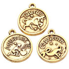 300x Lots Assorted Zodiac Signs Carved Round Golden Alloy Pendant Fit Necklace J
