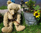 ANTIQUE MOHAIR RARE EARLY BING HUGE 28 TEDDY BEAR GEM VINTAGE LEATHER HARNESS