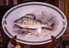 11 inch Portmeirion Compleat Angler Oval Plate Platter Perch Green Band #8