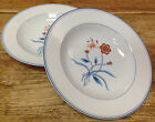 Jardin de Chine Fitz Floyd Rust Flowers Blue Butterfly 2 Rimmed Soup Bowls Asian