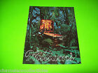 JUNGLE LORD By WILLIAMS 1981 ORIGINAL NOS PINBALL MACHINE PROMO SALES FLYER