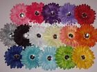 1 Dozen 4 Gerbera Daisy Flower Heads No Clips for Accessories  Scrapbooking