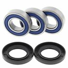 Yamaha TTR250, 1999-2006, Rear Wheel Bearings and Seals - TTR 250, TT-R