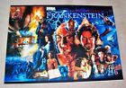 Sega FRANKENSTEIN 1995 Original NOS Pinball Machine Translite Art Mary Shelley's
