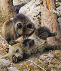 Carl Brenders ROUGH AND TUMBLE Grizzly Cubs giclee canvas 4 100