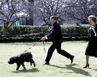 President Ronald Reagan walks dog with Margaret Thatcher White House 8x10 Photo