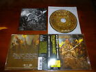 Alestorm / Black Sails at Midnight JAPAN+2 Running Wild A8