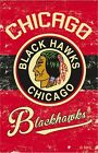 Chicago Blackhawks Collecting and Fan Guide 6