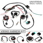 50CC 125CC Mini ATV Complete Wiring Harness CDI STATOR 6 Coil Pole Ignition Set