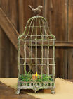 Rustic Galvanized Metal Candle Wire Lantern with Bird on Top,7''D X 16''H