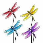 Four Piece Glass Dragonfly Garden Stake Set in Assorted Colors 9 by 26 Inches
