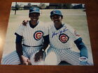 Chicago Cubs Collecting and Fan Guide 80