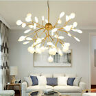 Modern Sputnik Firefly Ceiling Chandelier LED Light Branch Glass Lamp Lighting