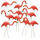 10 PACK PLASTIC PINK FLAMINGO Yard Outdoor Lawn Decor Garden Art Ornament Statue