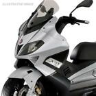 Shield Fairing Front for Aprilia Sr Max 125/300,Gilera Nexus 125