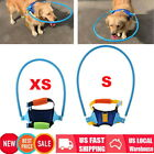 Anti Collision Pet Halo Guide Training Behavior Aid For Blind Dogs Cat Puppy Hot