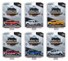 DUALLY DRIVERS SERIES 2 SET OF 6 TRUCKS 1 64 DIECAST CARS BY GREENLIGHT 46020