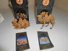 FONTANINI SEATED  STANDING HEIRLOOM NATIVITY CAMEL FIGURES 5 W BOXES