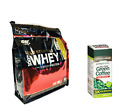 Optimum Gold Standard WHEY PROTEIN 6 lb + GREEN COFFEE Fat Burner 100 tab - BOGO