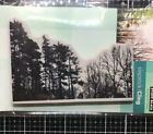 New Penny Black Rubber Stamp Christmas WINTER WOODLAND tree landscape cling
