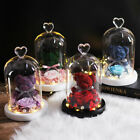 New Bear Rose Flowers In Glass Dome Christmas Birthday Valentines Day Gifts