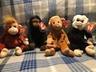 Ty beanie babies -  Mooch, Schweetheart,  Congo, Bongo With Tag Error- 4 Monkeys