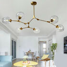 Gold 6 Head Glass Bubble Chandelier Adjustable Tree Branch Pendant Lamp Lighting