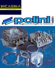 7928 - Cylinder Polini 47 Cast Iron Malaguti 50 Center Sl Ciak Yesterday