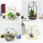 Glass Terrarium Geometric Prism Tabletop Box Flower Pot Plant Flower Vase Moss