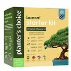 Kit to Easily Grow 4 Bonsai Trees from Seed+ Guide  Bamboo Plant Markers
