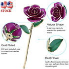 Long Stem Dipped 24k Gold Rose in Gift Box with Stand with Stand