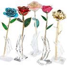 24K Gold Rose Dipped Flower Real Long Stem + Base Valentines Day Gift Mother
