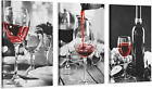 3 Pcs Red Wine Kitchen Wall Art Black and White Wine Glasses Canvas Art Painting